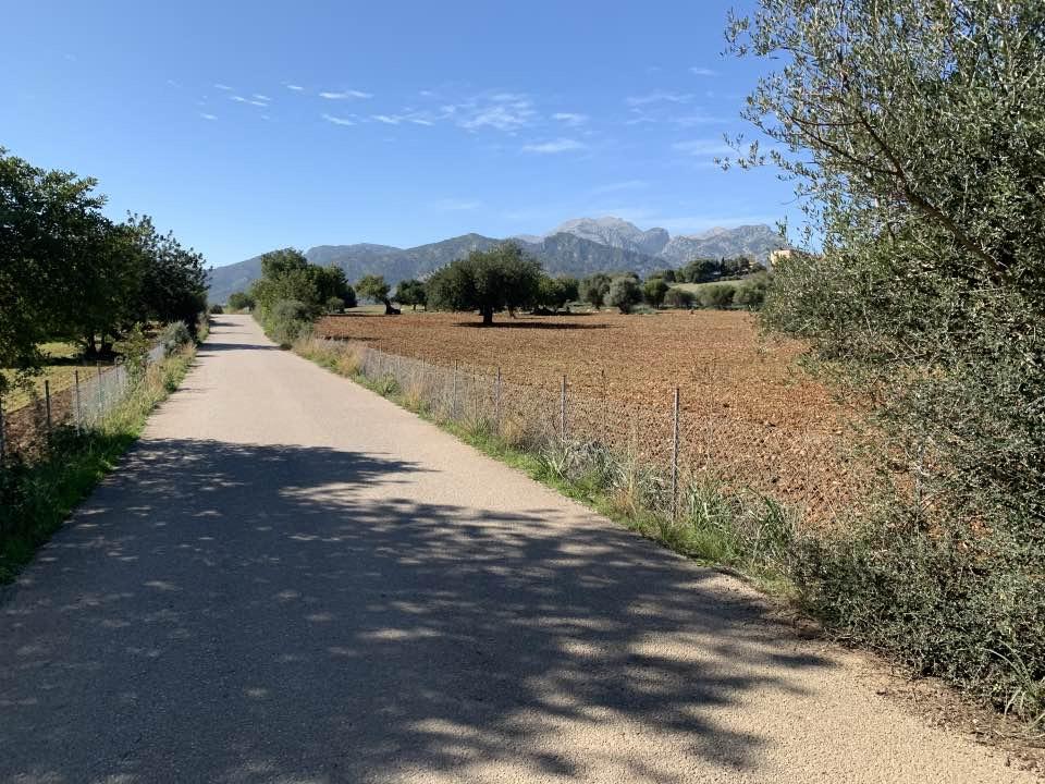 Ausgangssperre Auf Mallorca Geht Bis Zum 11. April